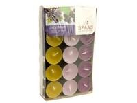 Spaas Čajové 30ks 3barvy Cassis fruit vonné svíčky krabička