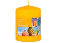 Bolsius NR Válec 60x80 Tropical Fruit vonná svíčka