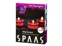 Spaas Čajové 24ks Wild orchid clearlight vonné svíčky