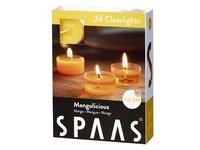 Spaas Čajové 24ks Mangolicious clearlight vonné svíčky