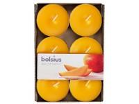Bolsius Aromatic Čajové Maxi 6ks Exotic Mango vonné svíčky