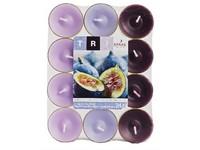 Spaas Čajové 24ks Tri Oriental fig vonné svíčky (plato)
