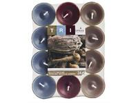 Spaas Čajové 24ks Tri Exotic wood vonné svíčky (plato)