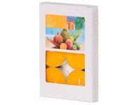 Bolsius NR Čajové 6ks Tropical Fruit vonné svíčky