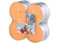 Bolsius NR Čajové Maxi 8ks Tropical Fruit vonné svíčky