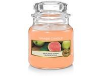 YC.sklo1/Delicious Guava                                              05/18