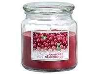Bolsius NR Sklo 100x110 Lovely Cranberry vonná svíčka