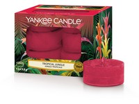 YANKEE CANDLE TROPICAL JUNGLE VONNÁ ČAJOVÁ SVÍČKA