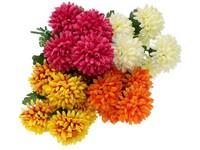 Chryzantéma puget 7 květů, mix barev