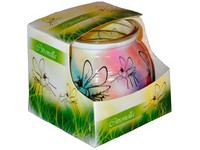 Sklo Dekor 80x72mm Citronella vonná svíčka v krabičce