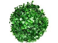 Koule buxus 180 mm zelená
