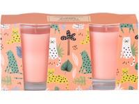 Svíčka ve skle 50x62 mm 2 ks v krabičce Cherry Blossom