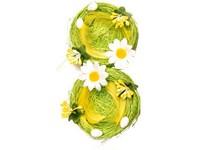 Hnízdečko 2 ks proutěné s kytičkou, zelená