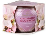 Emocio Sklo Dekor 70x62 mm Orchard Blossom, vonná svíčka