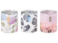 Bolsius Sklo 73x80mm Rose garden, Lilac, Mango vonná svíčka mix