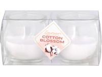 Emocio Sklo 56x55 mm 2 ks v plastové krabičce Cotton Blossom vonná svíčka