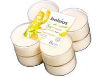 Bolsius Aromatic 2.0 Čajové Maxi 8ks Feel happy, vonné svíčky