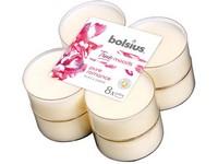 Bolsius Aromatic 2.0 Čajové Maxi 8ks Pure romance, vonné svíčky