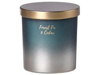 Emocio sklo 80x90 mm s plechovým víčkem vonná svíčka, v dárkové krabičce Forest Fir & Cedar
