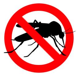 Citronelly - ochrana proti hmyzu a komárům