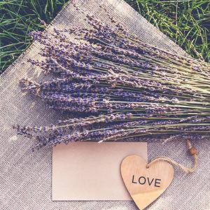 Lavender & Cedar