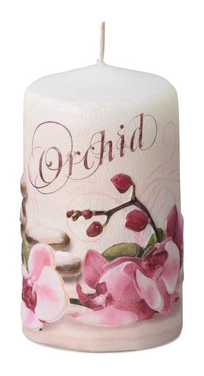BELOVED ORCHID